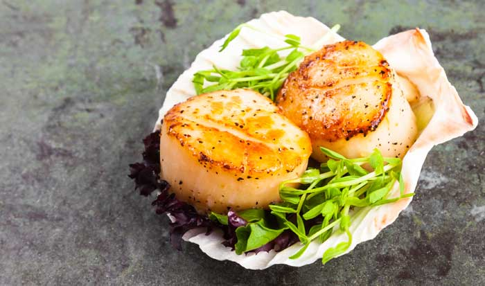 Citrus Marinated Sea Scallops with Poppy Seeds